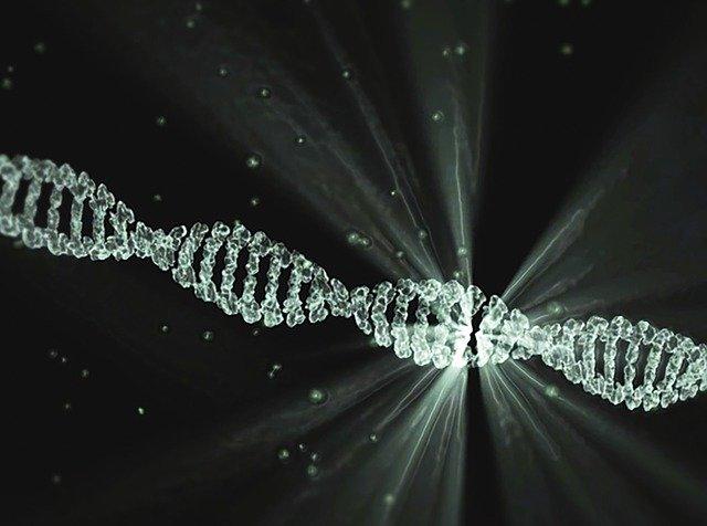 DNAマッチングのイメージ